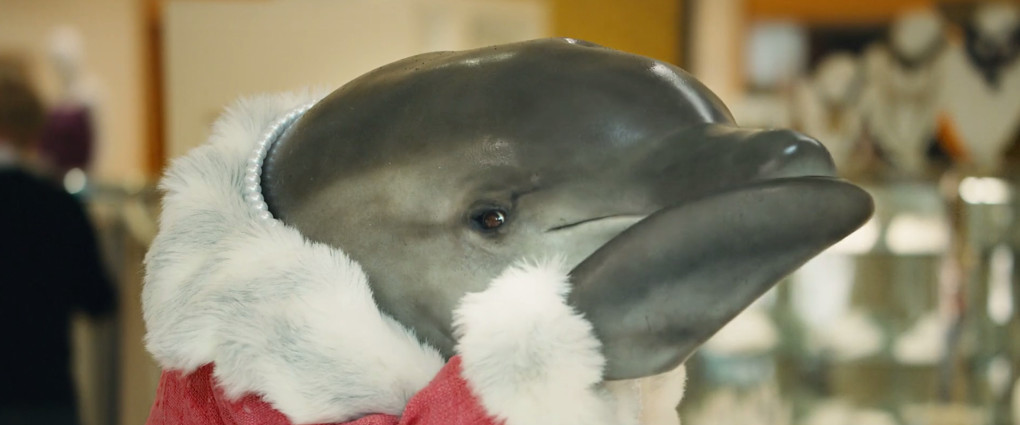 snapple-dolphin